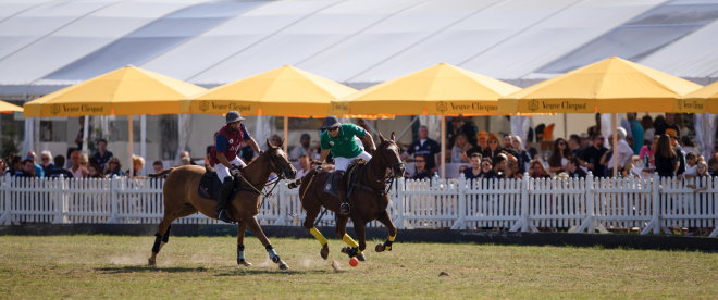 Polo High Goal Event